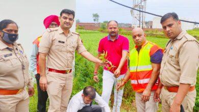 Photo of जनपद मेरठ के सिवाय टोल प्लाजा पर पर्यावरण संरक्षण के लिए किया गया वृक्षारोपण